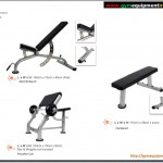Benches and preacher curl
